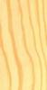 pino_amarillo